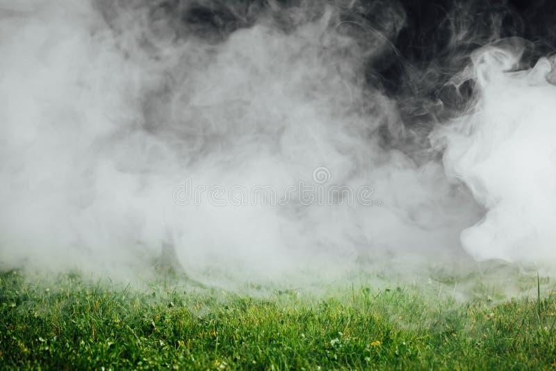 在绿草草坪的烟 免版税库存照片