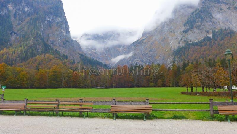 在绿草领域前面的长凳 图库摄影