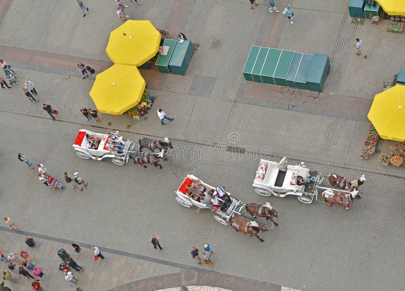 在主要集市广场,克拉科夫,波兰的马支架 图库摄影