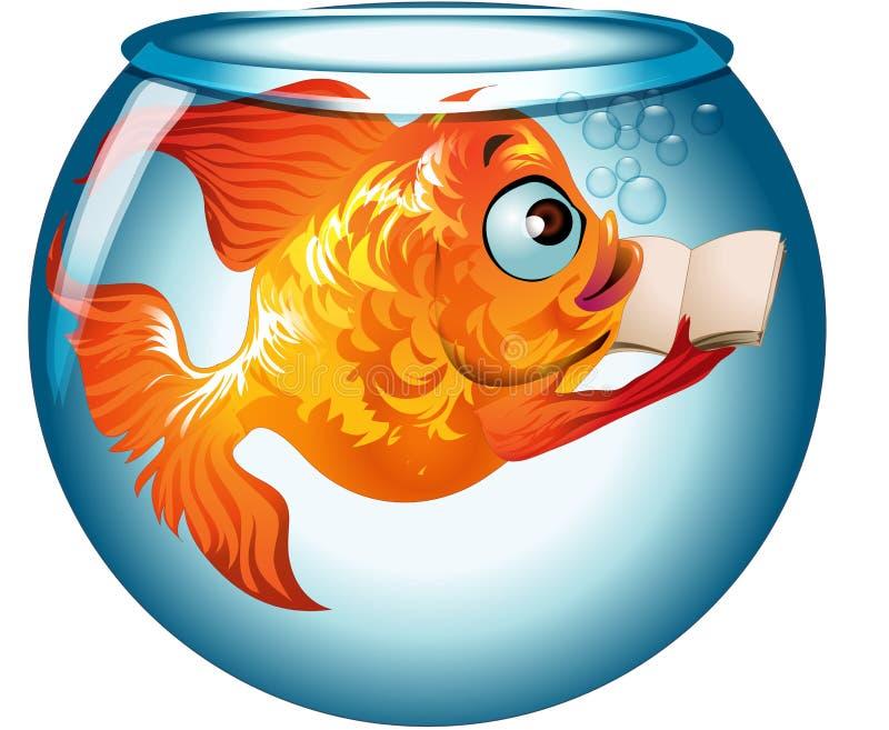 在水阅读书的鱼以格式 库存照片