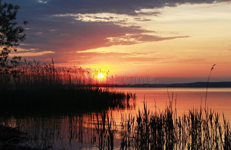 在水附近的安静的日落 免版税库存图片