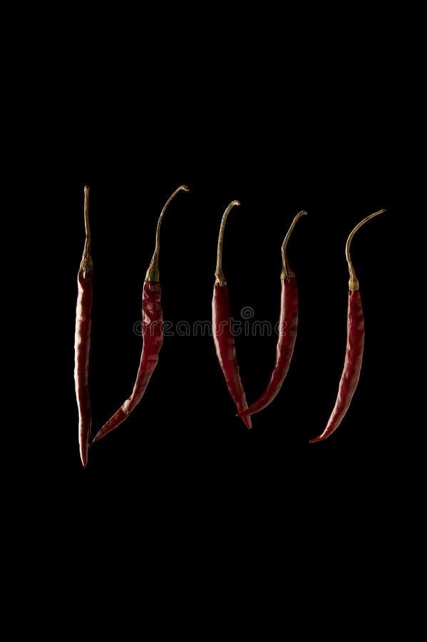 在黑backgound的干红色DE ARBOL墨西哥辣椒 免版税库存图片