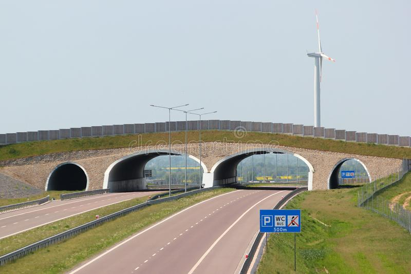 在A4高速公路高速公路的野生生物天桥在东波兰 图库摄影