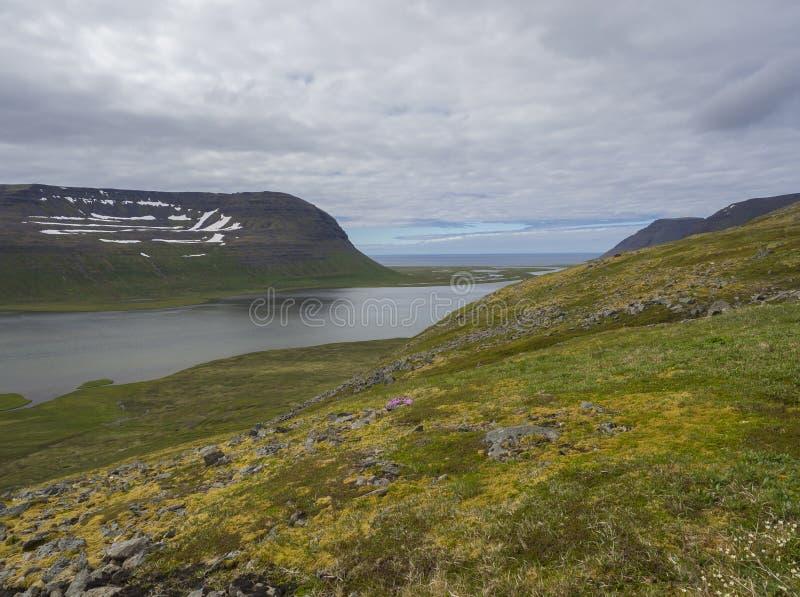 在adalvik的看法和latrar在西部海湾自然保护Hornstrandir在有湖和河小河的冰岛 免版税库存图片