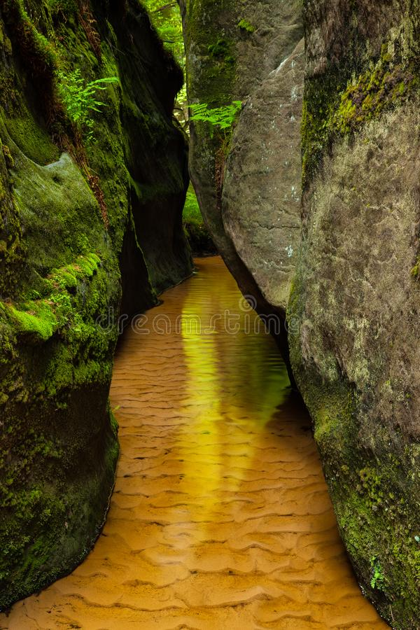 在Aderspach,捷克峭壁的一条小小河  免版税图库摄影