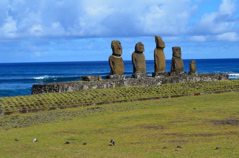 在Ahu Tahai礼仪复合体的Moais在安加罗阿附近, Rapa Nui复活节岛 库存图片