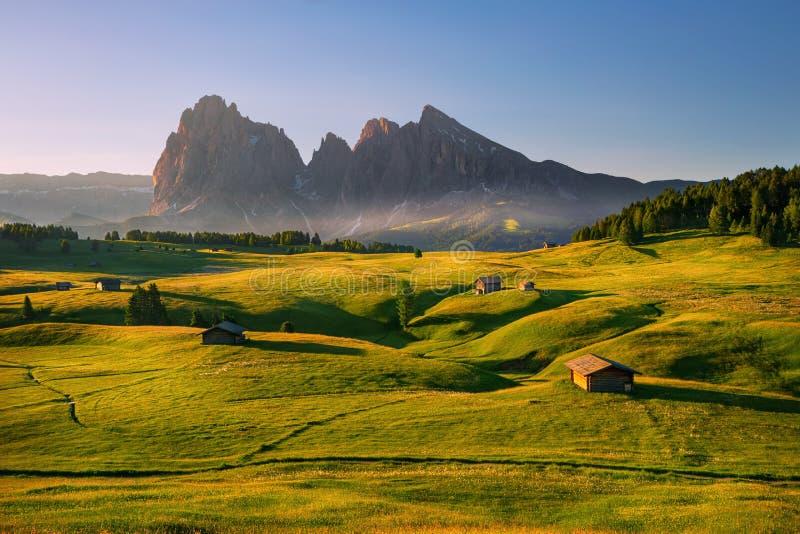 在Alpe di Siusi,白云岩,意大利的夏天日出 库存照片