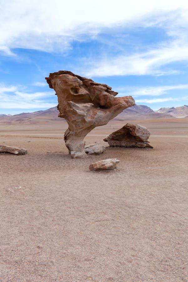 在Altiplano,玻利维亚的石树 免版税图库摄影