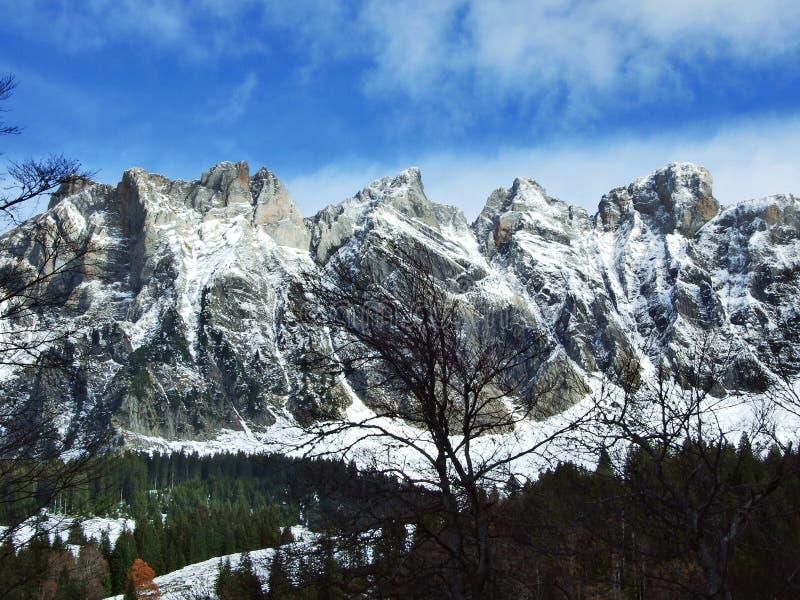 在Alvier小组山脉的第一雪 库存照片