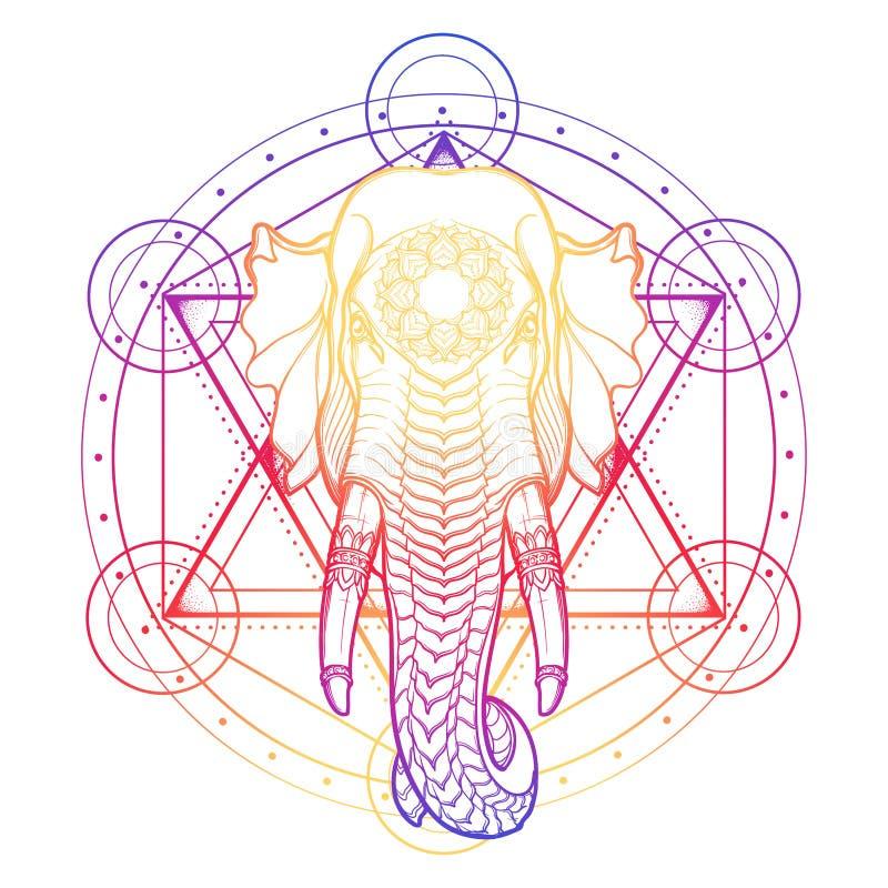 在anahata chakra的标志的大象头 在亚洲艺术和工艺的普遍的motiff 复杂手图画隔绝了  皇族释放例证