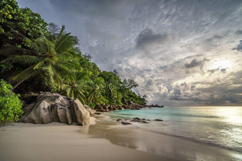 在anse乔其纱, praslin,塞舌尔群岛13的天堂海滩 免版税图库摄影