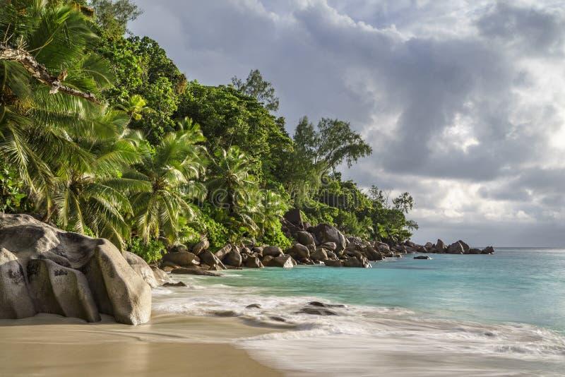 在anse乔其纱, praslin,塞舌尔群岛25的天堂海滩 免版税图库摄影