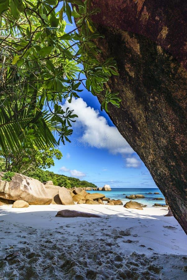 在anse拉齐奥, praslin,塞舌尔群岛3的惊人的天堂海滩 免版税图库摄影
