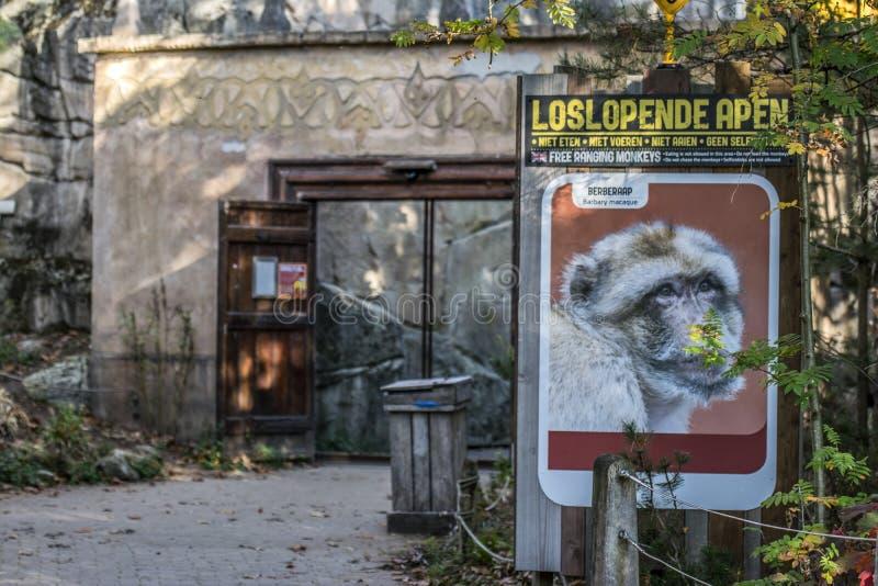 在Apenheul动物园的广告牌在阿珀尔多伦荷兰2018年 库存照片