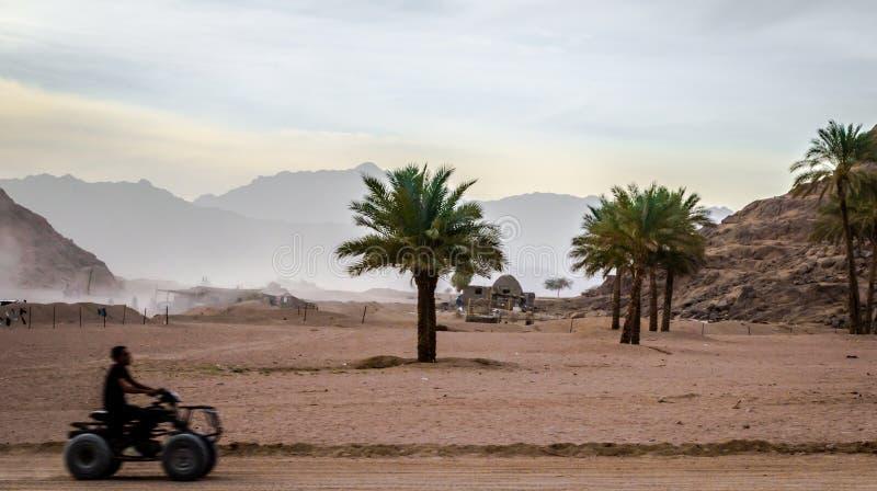 在ATV的人乘驾在沙漠和moun的背景 库存图片