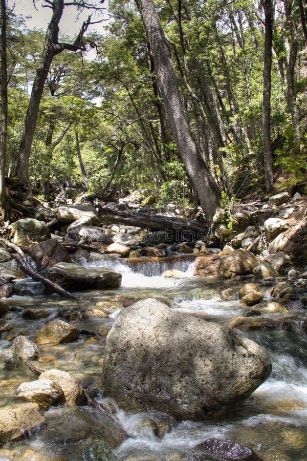在Bariloche,阿根廷附近的瀑布 库存照片