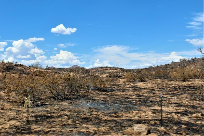 在Bartlett湖水库,Tonto国家森林,马里科帕县,亚利桑那州的山火,美国 库存照片