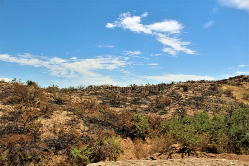 在Bartlett湖水库,Tonto国家森林,马里科帕县,亚利桑那州的山火,美国 免版税库存照片