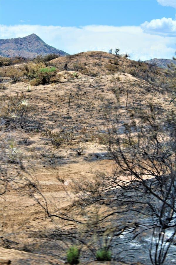 在Bartlett湖水库,Tonto国家森林,马里科帕县,亚利桑那州的山火,美国 免版税库存图片