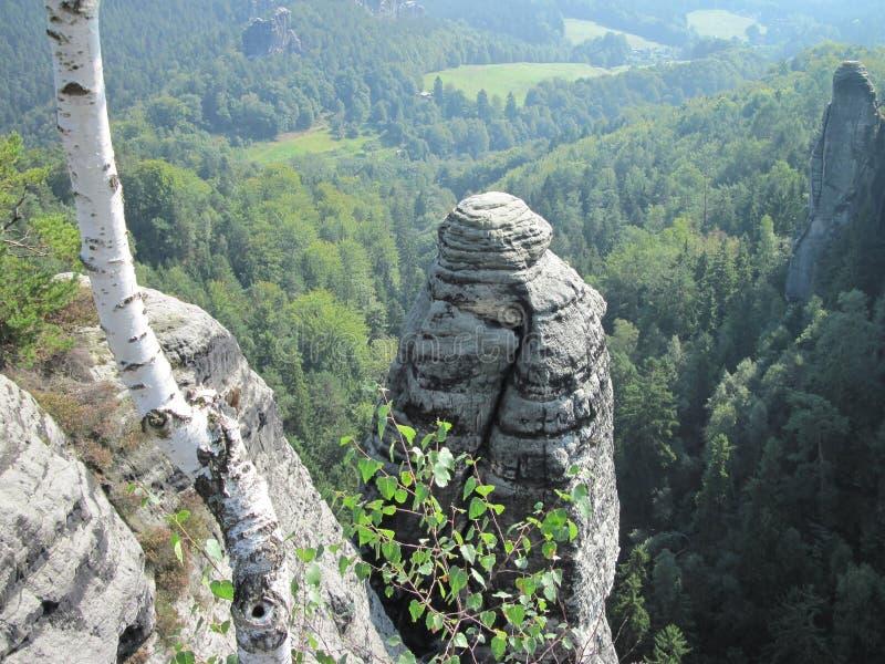 在Bastei的岩层 图库摄影