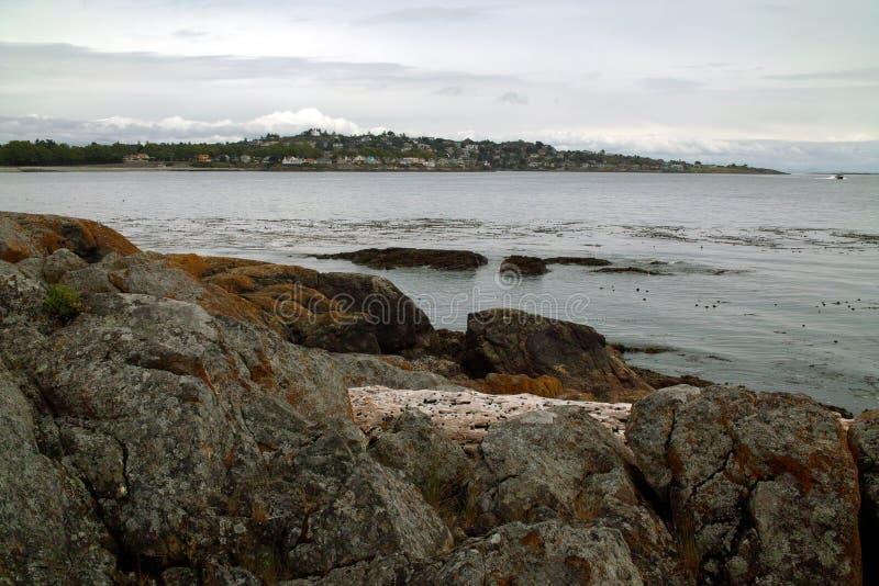 在BC维多利亚加拿大附近的海岸线 免版税图库摄影