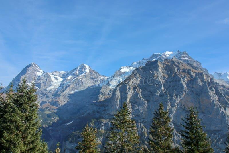 在Bernese范围的早晨视图在山风景的,格林德瓦美丽的村庄 免版税库存图片