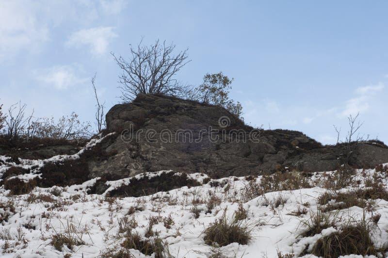 在Bieszczady山的岩石在波兰 免版税图库摄影
