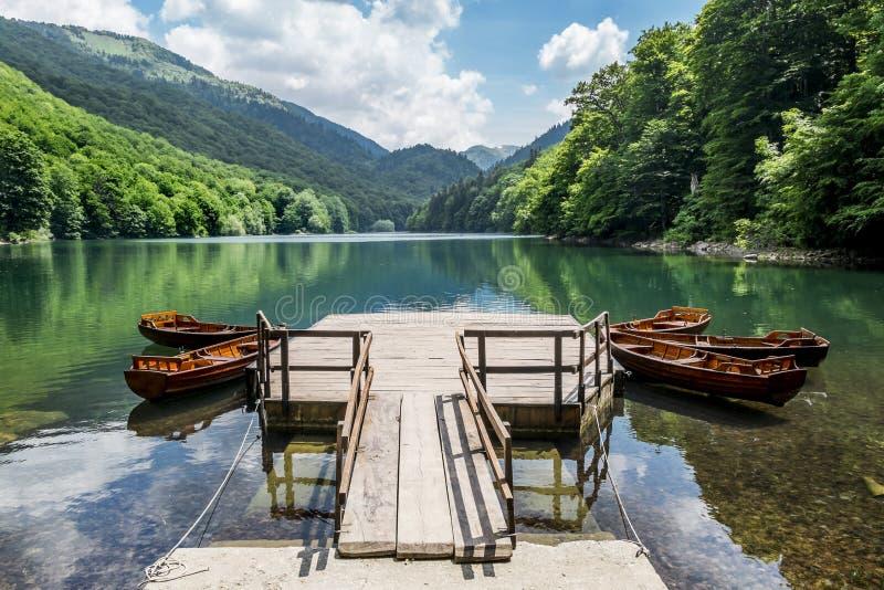 在Biogradska湖的小船在国家公园Biogradska Gora 库存图片