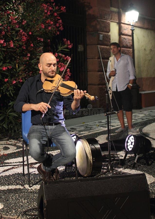 在Birkin树音乐会期间的小提琴手 图库摄影