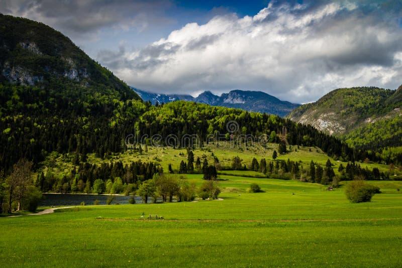 在Bohinj湖的五颜六色的夏天早晨在特里格拉夫峰国家公园斯洛文尼亚,朱利安阿尔卑斯山,欧洲 免版税图库摄影