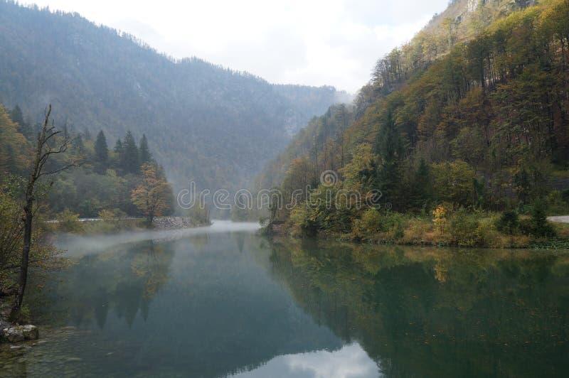 在Bohinj湖的有雾的早晨 免版税库存照片