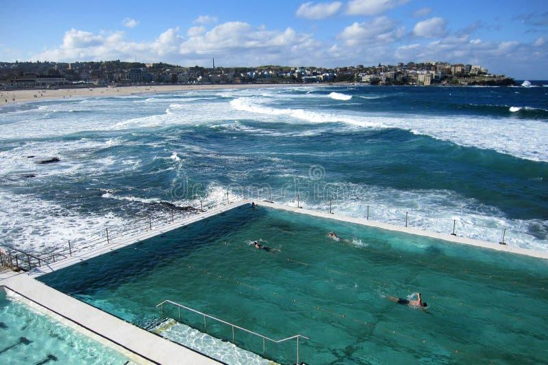 在bondi海滩的室外游泳池 免版税库存照片