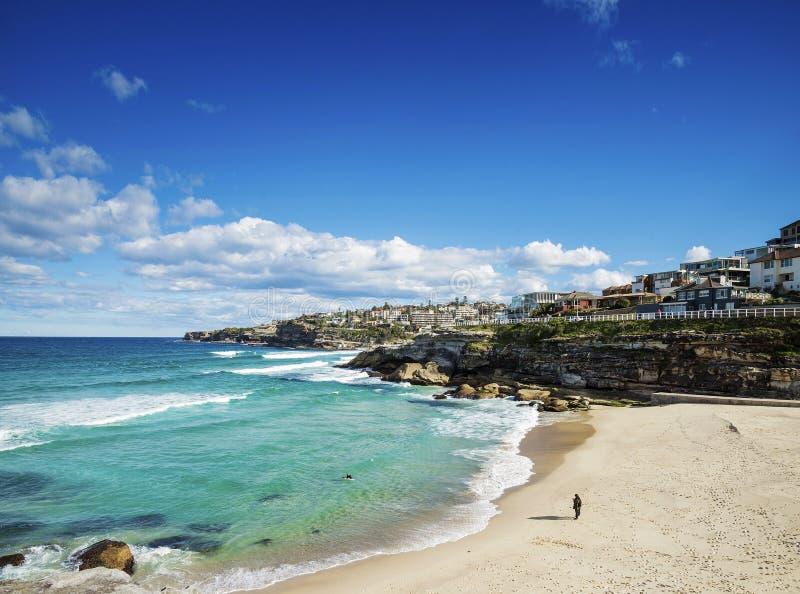 在bondi附近的Tamarama海滩在悉尼澳大利亚海岸 库存图片