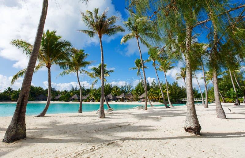 在Bora Bora的海滩 免版税图库摄影