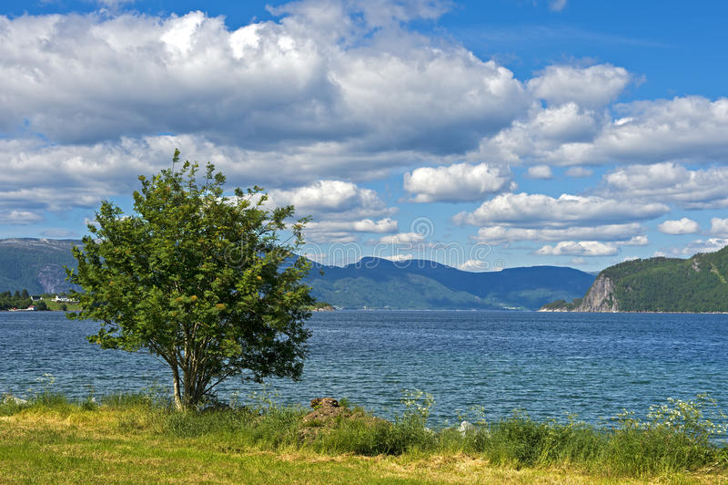 在Brekke附近的Risnesfjorden 免版税库存照片