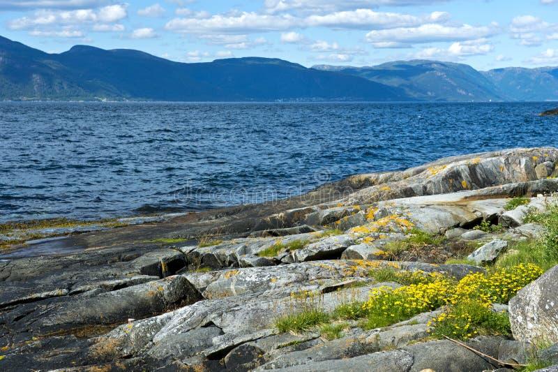 在Brekke附近的Sognefjorden, 库存照片