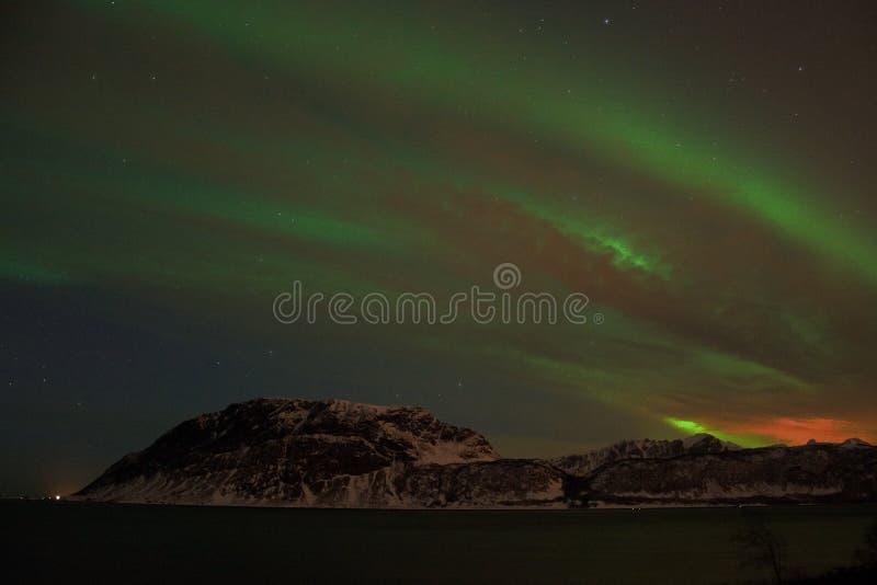 在Bremnes的北极光在哈尔斯塔,挪威附近 库存照片