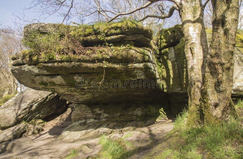 在Brimham的岩层晃动,北约克郡,英国,英国 免版税库存照片
