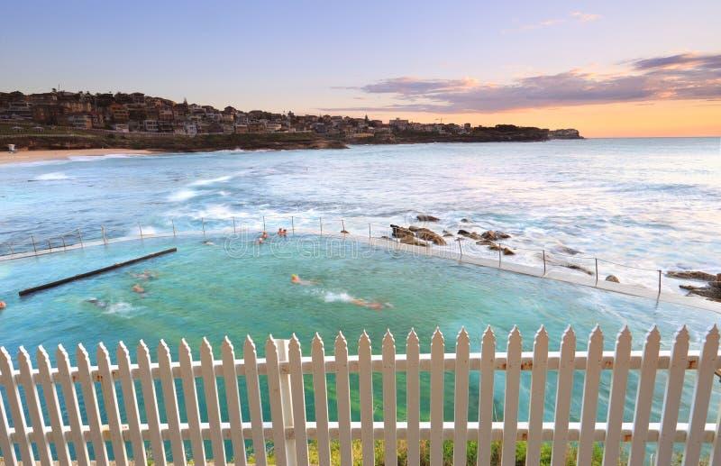 在Bronte水池,澳大利亚的清早游泳 免版税库存图片