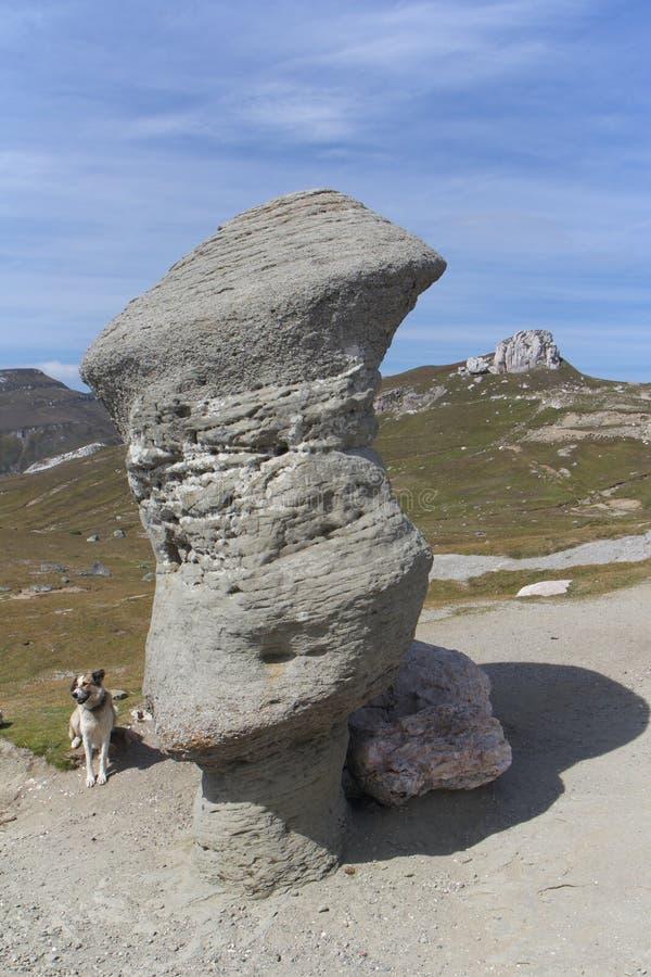在Bucegi山的岩层,罗马尼亚 免版税库存照片