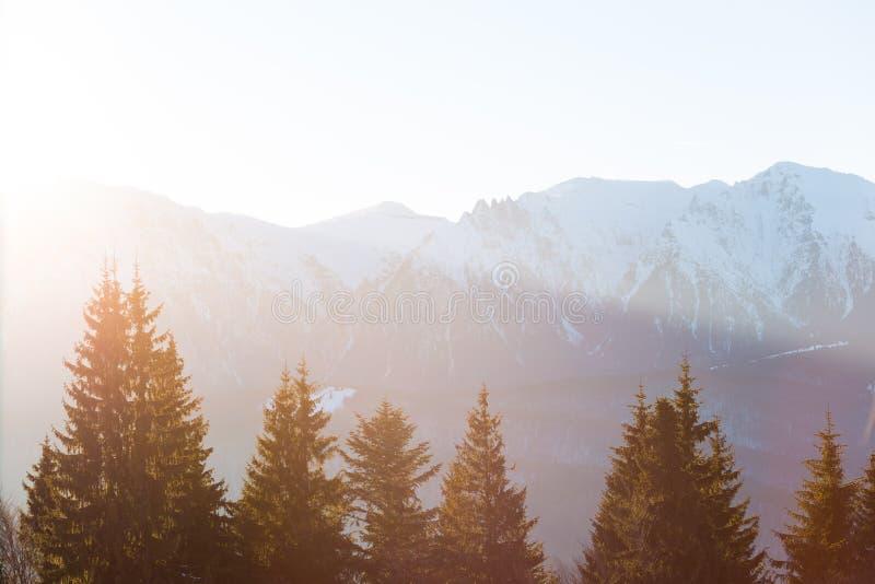 在Bucegi山罗马尼亚的日落 库存照片