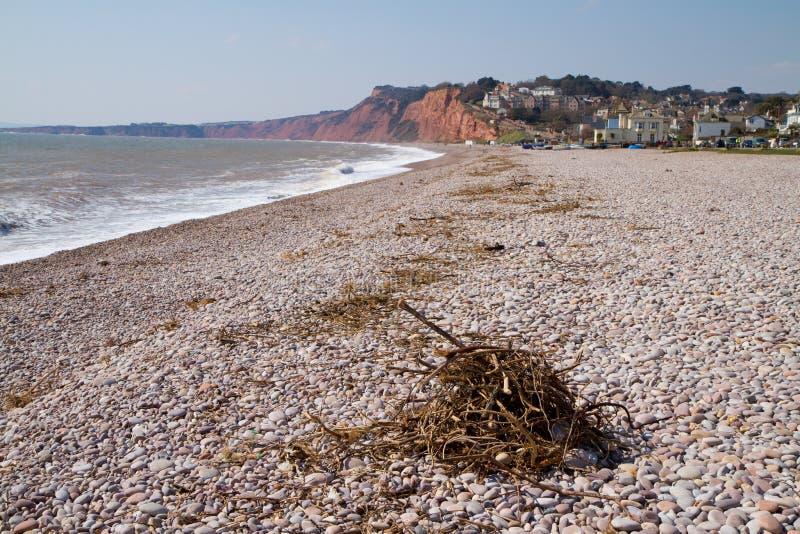 木瓦海滩德文郡英国 免版税库存照片