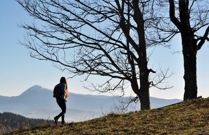 在Bukovel附近滑雪胜地的喀尔巴阡山脉  免版税库存照片