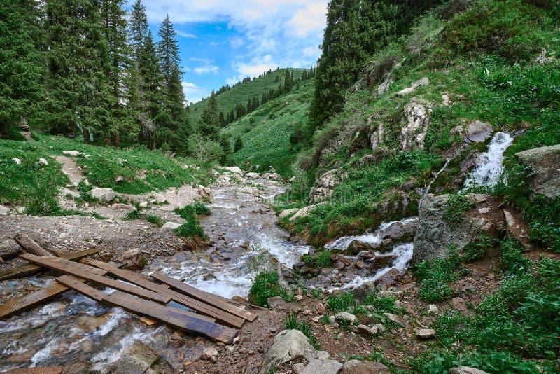 在butakovsky瀑布附近的河在阿尔玛蒂,风景附近 图库摄影