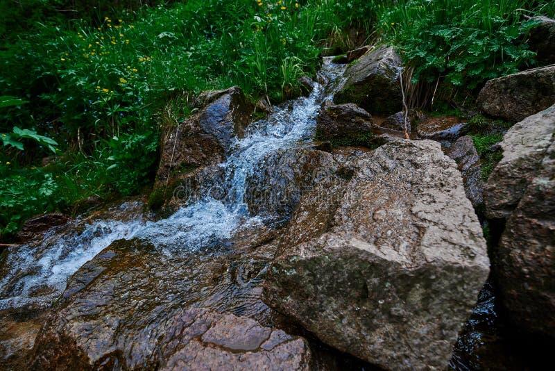 在butakovsky watterfall附近的河在阿尔玛蒂附近的6月 库存照片