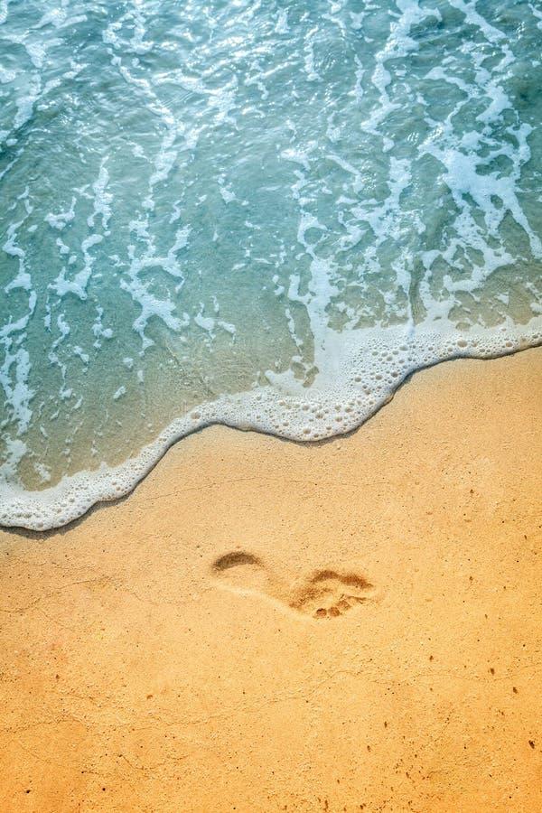 在BVI的沙子海滩 库存图片