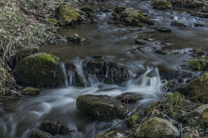 在Bynov村庄附近的Probostovsky小河在春天晚上 免版税库存图片