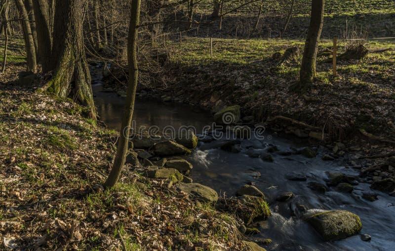 在Bynov村庄附近的Probostovsky小河在春天晚上 免版税库存照片