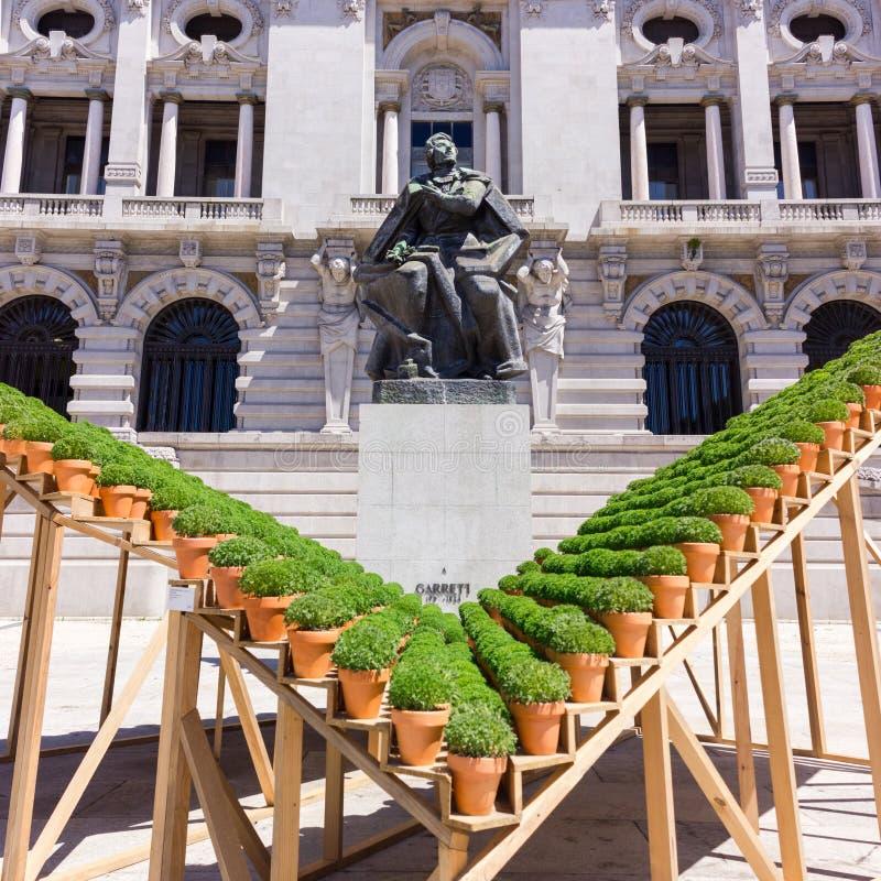 在Camara自治都市之外的盆的蓬蒿植物在波尔图,葡萄牙 免版税库存照片