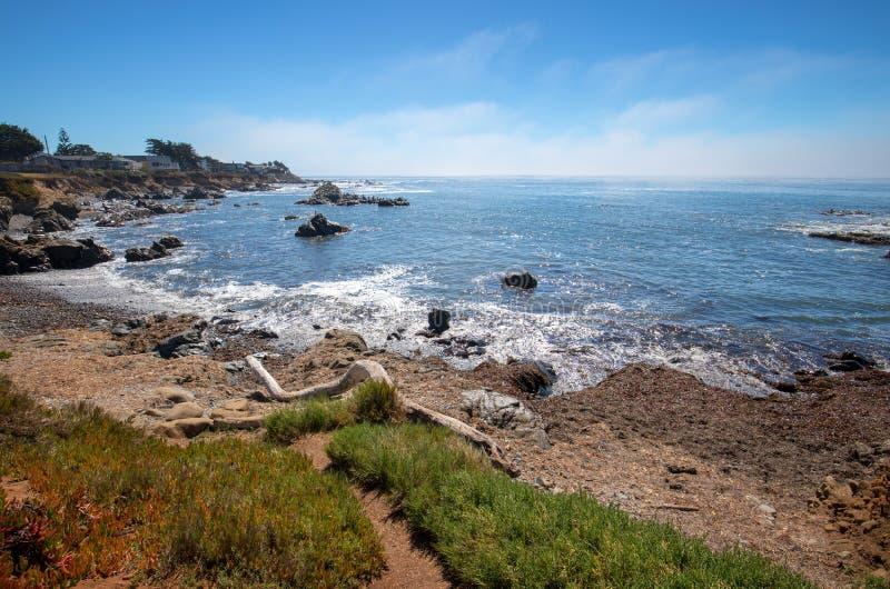在Cambria加利福尼亚美国的漂流木头注册坚固性和岩石中央加利福尼亚海岸线 库存图片